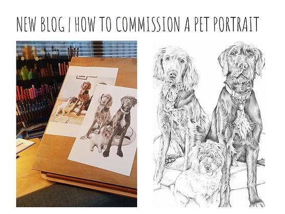 how to commission a pet portrait blog post