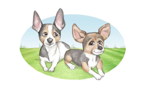 pet dog drawing caricature sketch | picky pencil dog caricatures