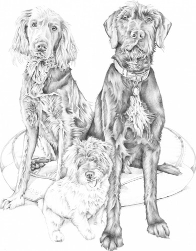 Graphite pencil family of dogs drawing Birthday gift commission   picky pencil pet portrait artist