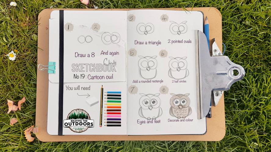 no 19 - cartoon owl