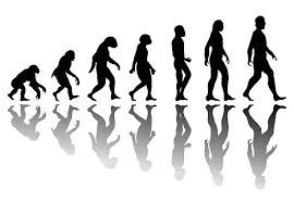 Being Evolution