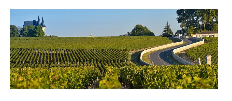Route-des-vins-du-Médoc.png