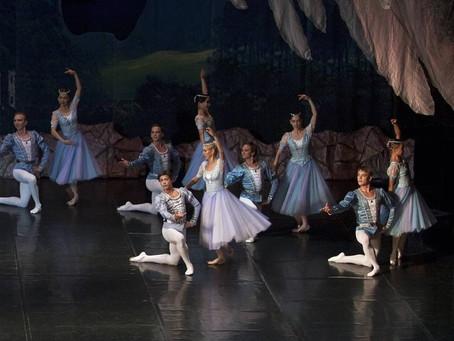 «Лебединое озеро» откроет «Летние балетные сезоны в Сочи»