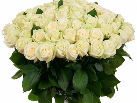 С Днём рождения, уважаемая Елена Васильевна!