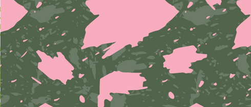 Phylodendron Pink Princess