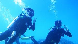 ハワイ|ハナウマ湾|ファンダイビング|ダイビング