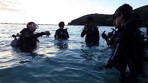 ハワイ|ハナウマ湾|体験ダイビング