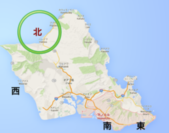 ハワイ|ノースショア|ハレイワ|ダイビング|夏|限定ポイント