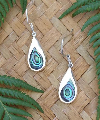 Sterling Silver-Paua Shell Earrings 2369bx