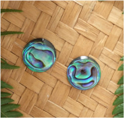 Carved Paua Earring - Silver Stud  (2034bx)