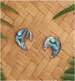 Koru Carved Paua Earring - Silver Stud  (1945bx)