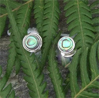 Sterling Silver NZ Paua Stud Earring 2152bx