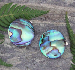 Clip Earring - Hand Carved Paua Shell (2071/cBX)