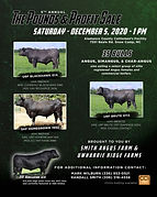P&P Full page ad - November.jpg