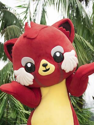 Red Panda, National University of Singapore