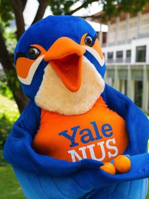 Yale, National University of Singapore