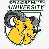 DelVal.png