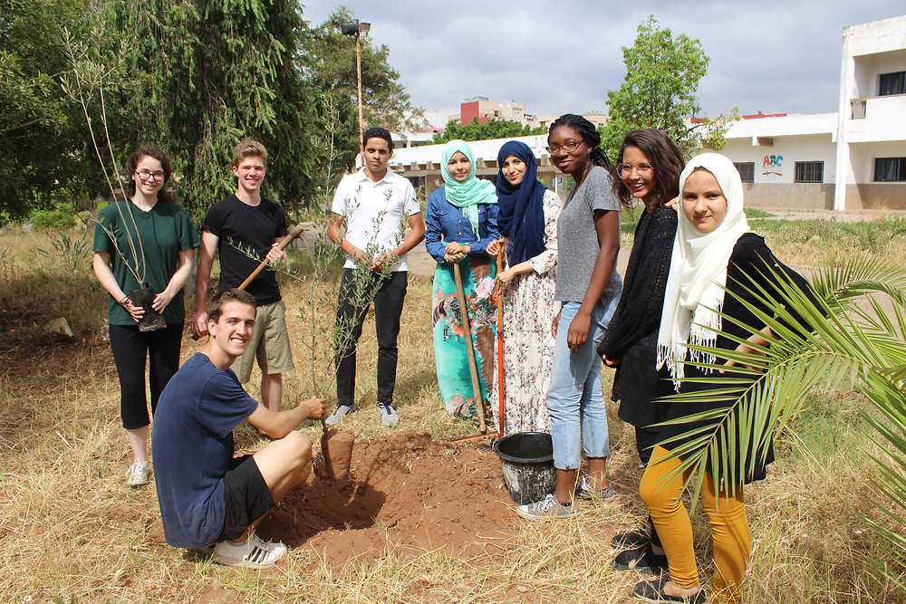 Students working to protect the environment