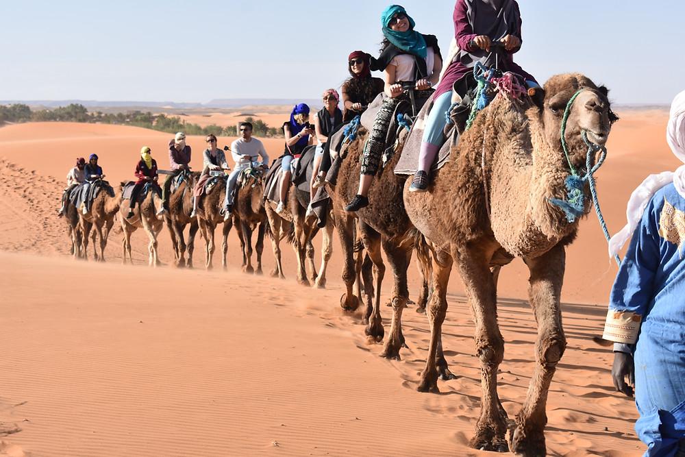 Piera and Qalam students visit the Sahara Desert