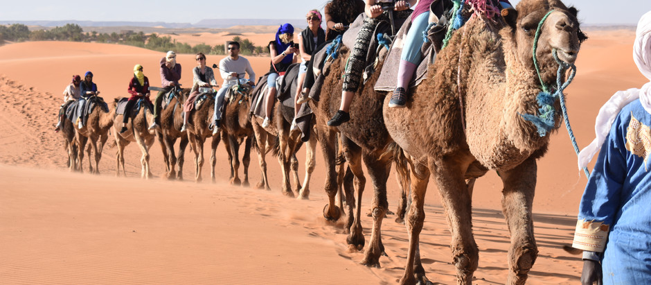 A Student's Perspective: The Sahara Desert Trip