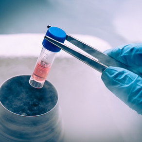 Umbilical cord blood banking; balancing the tensions