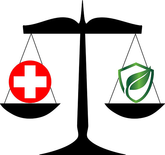 Balance Health and Environment Protection, Vision