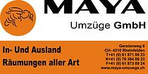 Plane_Maya_Umzüge.png