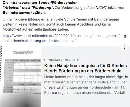 Die_intranzparente_Förderschule.jpg