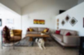 הסלון, בתוספת קטנה וחמודה