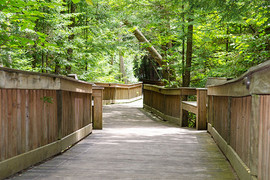 Trails and Boardwalks
