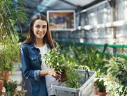 Woman Working in Greenhouse