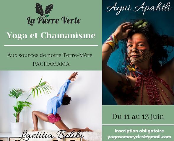 Yoga et Chamanisme.png