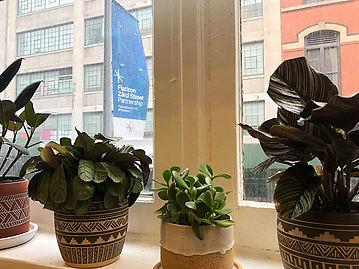 Therapist NY   Amy Calmann LCSW   Psychotherapy Office Flatiron Union Square Chelsea Manhattan New York