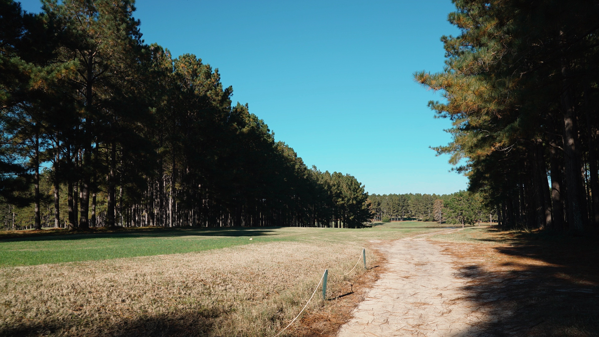 Wanee Lake Golf & RV Park, Pine Trees, R