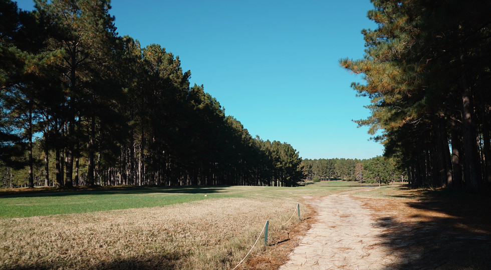 Wanee Lake Golf & RV Park, Pine Trees, R