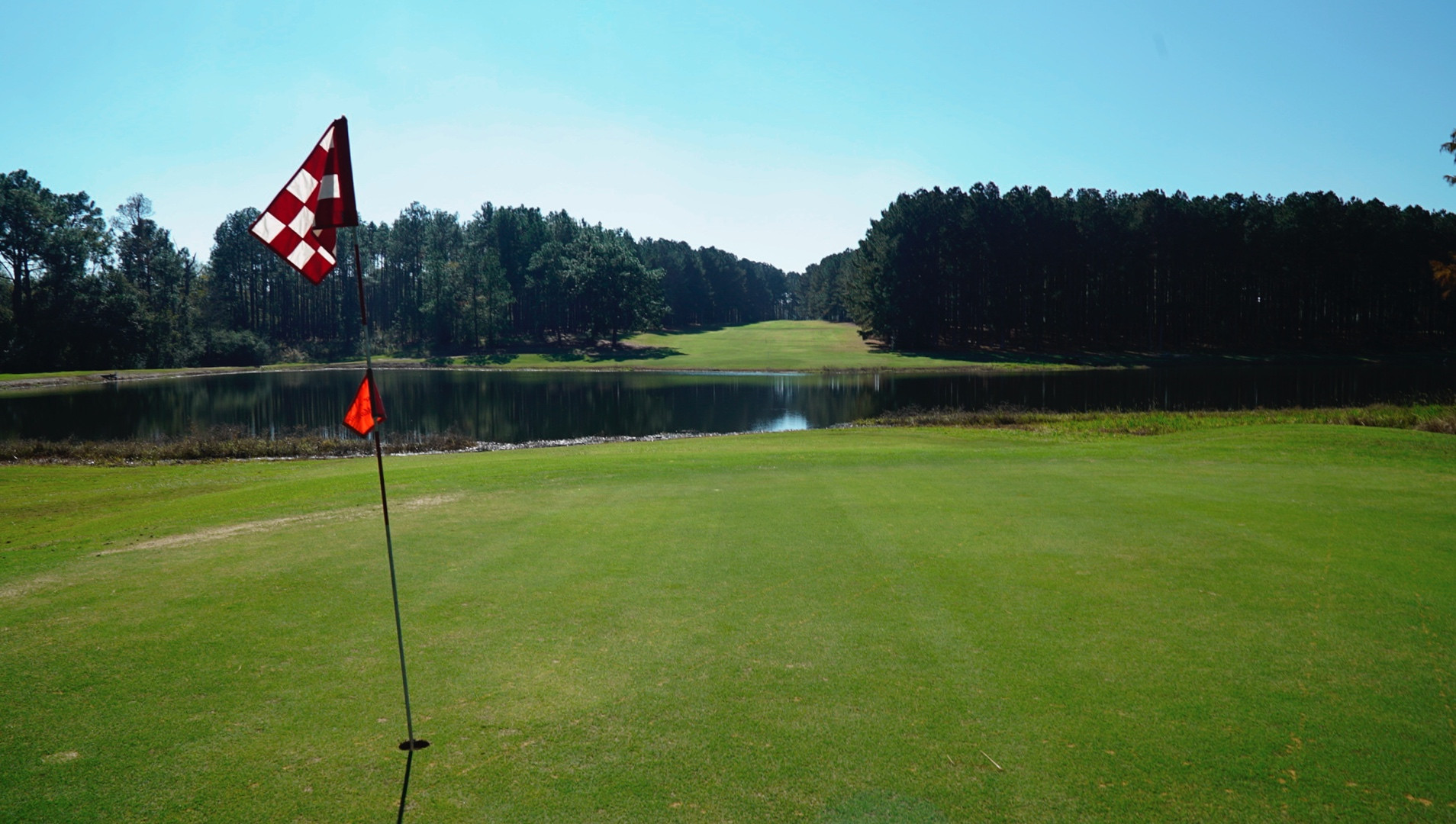Wanee Lake Golf & RV Park, 8th hole, tre