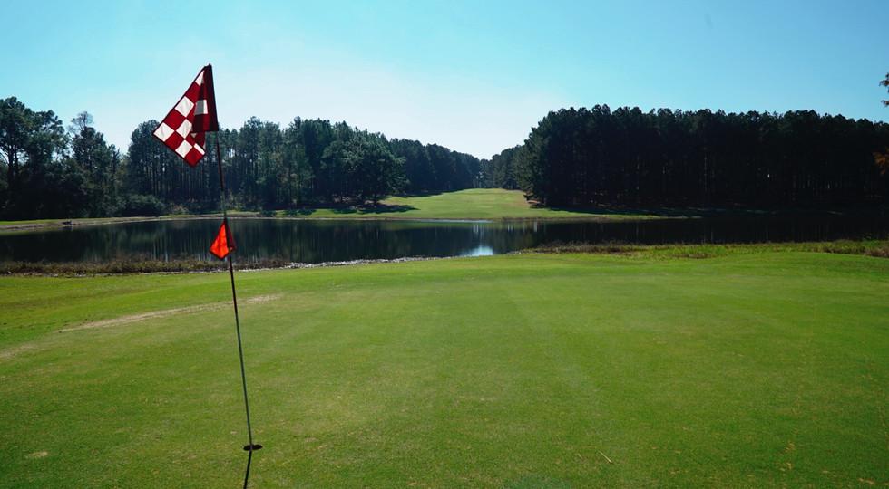 Wanee Lake Golf & RV Park, 8th hole, tre
