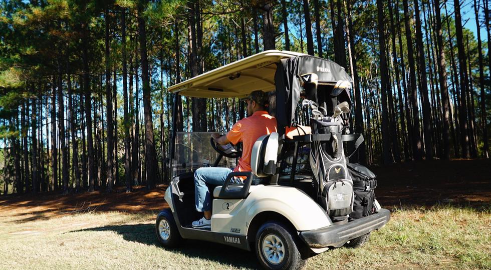 Wanee Lake Golf & RV Park, Golf Cart, Go