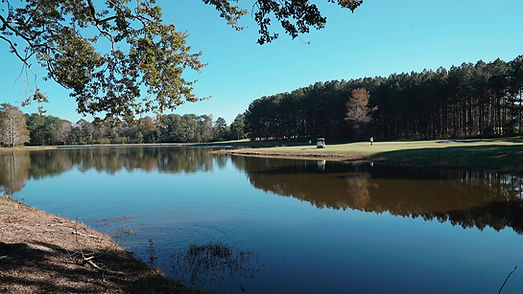 Wanee Lake Golf & RV Park, Pine Trees, l