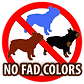 mahalley bull, bulldog frances, bulldogue frances, french bulldog, bulldog, canil, no fad colors