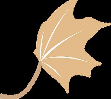 AA Law Logo concepts v4_web_leaf.png