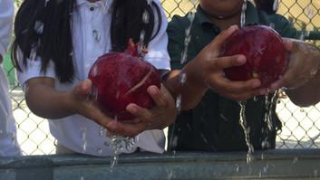 edible schoolyard kern county