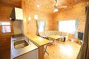 Log Cottage Skylight Living room