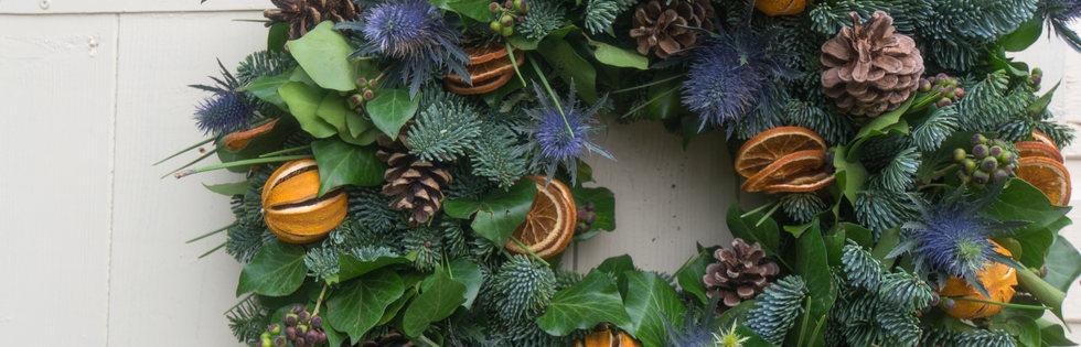 Clementine Pine