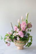 Hyacinth, hellebores and 'purple splash'