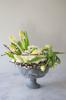 'Euro' chrysanthmum, 'Advant guard' tulip arrangement