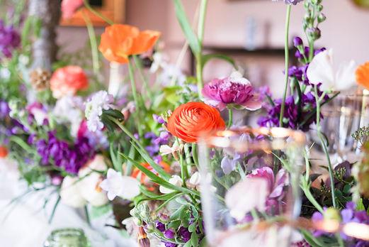 Bee friendly flowers - Jacqui O