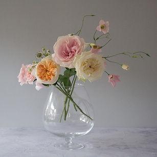 Jacqui O - garden roses