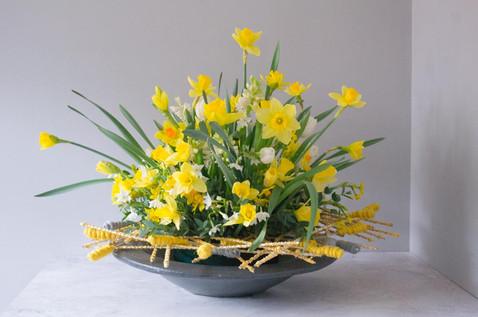 daffodils, hyacinth & narcissus arrangem