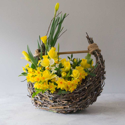 daffoldil and narcissus basket.jpg